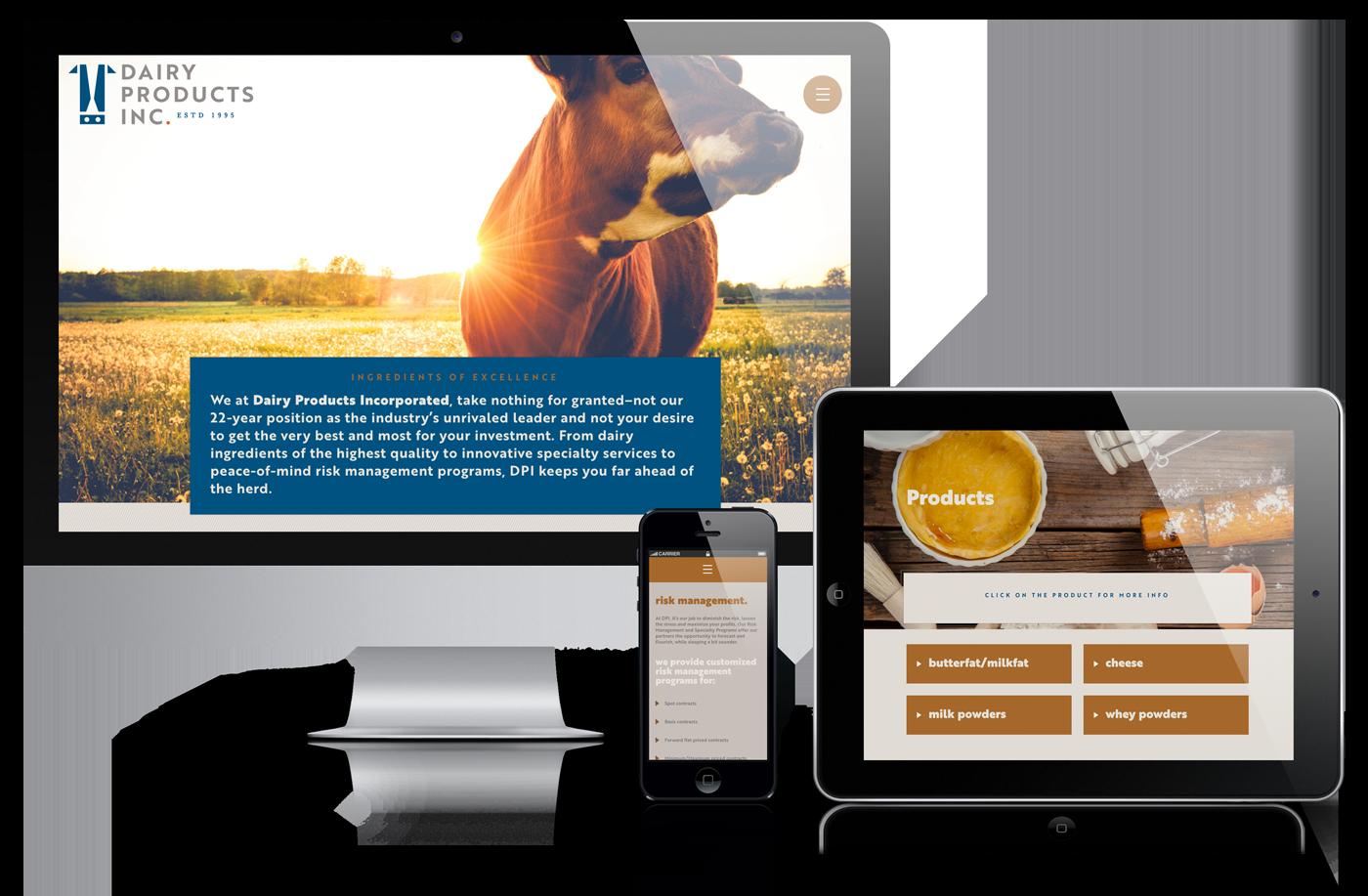Website Design Minneapolis
